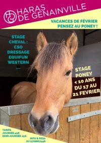 C'est bientôt les vacances de février : pensez aux stages poney !